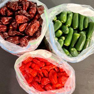 Different shapes, sizes, flavour, heat...chilli chilli chilli....  #thechillichickshop #chilli #chillisauce #cheflife #aussiebusinesswomen #australianfood #lovethetweed